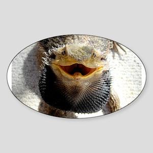 Bearded Dragon Sticker (Oval)