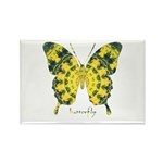 Solarium Butterfly Rectangle Magnet (100 pack)