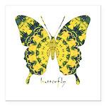 Solarium Butterfly Square Car Magnet 3