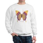 Quills Butterfly Sweatshirt