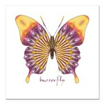 Quills Butterfly Square Car Magnet 3