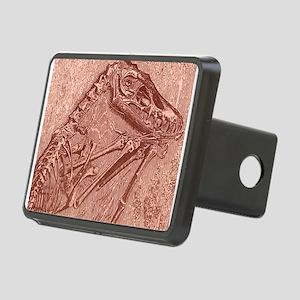 fossildino Rectangular Hitch Cover