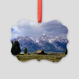 Jul11 Picture Ornament