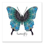 Transformation Butterfly Square Car Magnet 3