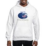 9-11 We Have Not Forgotten Hooded Sweatshirt