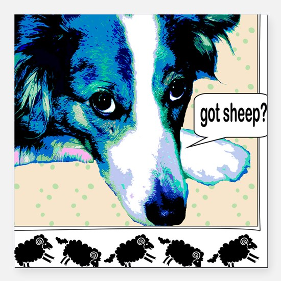 border collie got sheep2a.png Square Car Magnet 3""