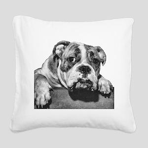 bulldog-3 no background dry brush Square Canva
