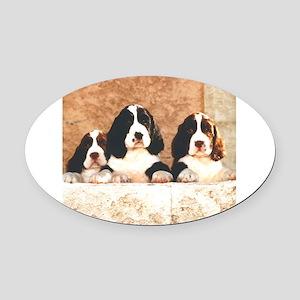 springer pups2 sq Oval Car Magnet