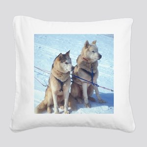 huskies1 Square Canvas Pillow