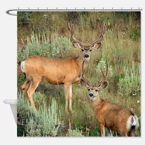 Mule deer velvet Shower Curtain