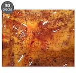 Lava 54 Puzzle