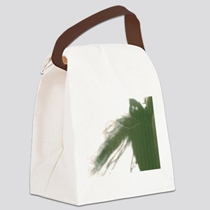 I Know How To Ear It. Canvas Lunch Bag