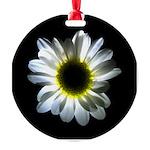 Illuminated Daisy Round Ornament