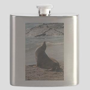 DSC_0805 Flask