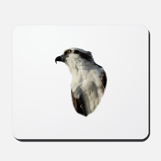 Focused Osprey Mousepad
