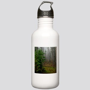 Pine forests 2 Stainless Water Bottle 1.0L