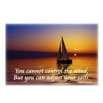 'Adjust Your Sails' Postcards (Package of 8)