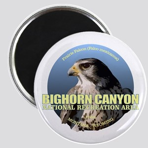 Bighorn Canyon Magnets