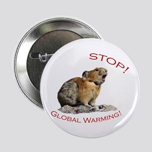 "Global Warming 2.25"" Button"