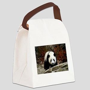 tai shan head on - horizontal Canvas Lunch Bag