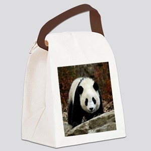tai shan head on - square Canvas Lunch Bag