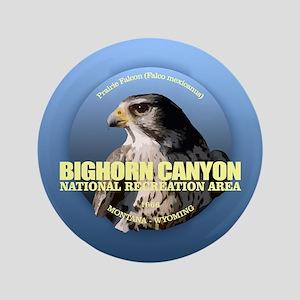Bighorn Canyon Button