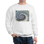 Star Spangled Spiral Sweatshirt