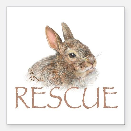 "Bunny rabbit rescue Square Car Magnet 3"" x 3&"