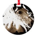 Pony Love Round Ornament
