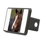 Pony Love Rectangular Hitch Cover