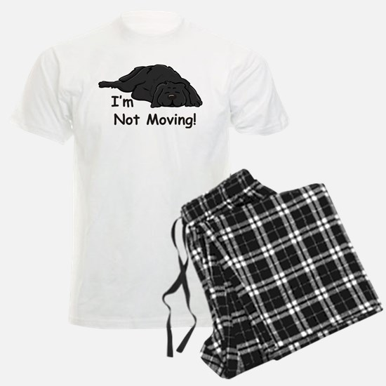 Newfie Carpet pajamas