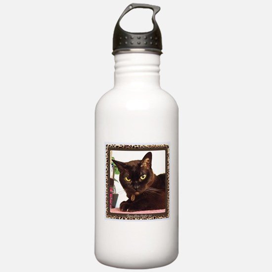 Cattitude Sports Water Bottle