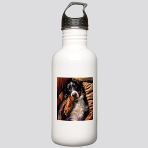 Berner Posing on Couch Stainless Water Bottle 1.0L
