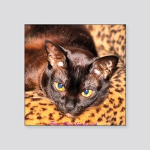 """House Panther Square Sticker 3"""" x 3"""""""