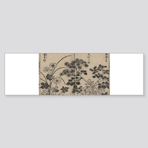 Two kinds of pine needle flowers - Yasukuni Tachib