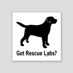 "Got Rescue Labs II Square Sticker 3"" x 3"""
