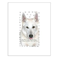 White German Shepherd Dog - A Posters