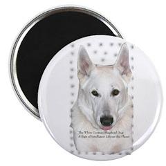 White German Shepherd Dog - A Magnet