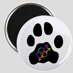 Bisexual or Poly Pride (M/M/F) Magnet