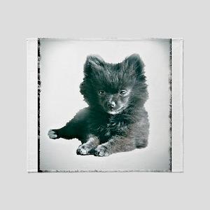 Adorable Black Pomeranian Puppy Throw Blanket