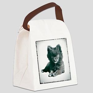 Adorable Black Pomeranian Puppy Canvas Lunch Bag