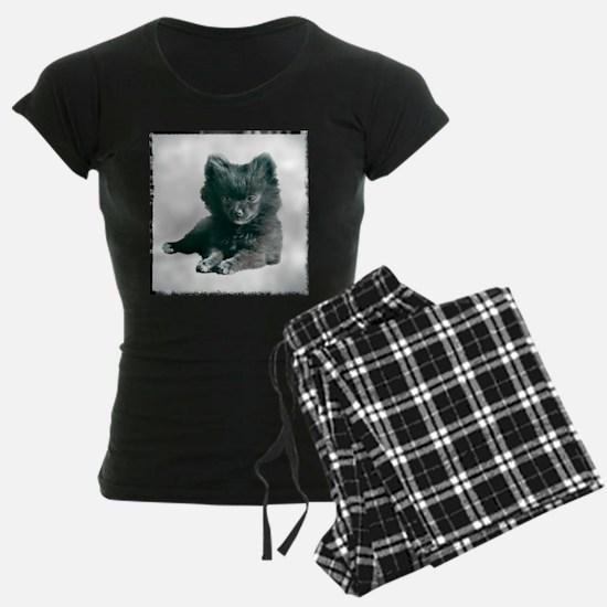 Adorable Black Pomeranian Puppy Pajamas