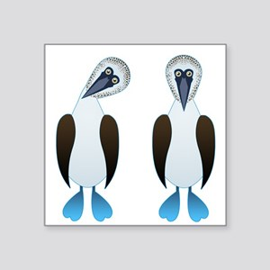 "Pair of Boobys Square Sticker 3"" x 3"""