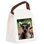 Lemur Canvas Lunch Bag
