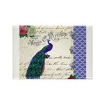Vintage peacock collage Rectangle Magnet (100 pack
