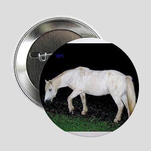 "White Horse 2.25"" Button"