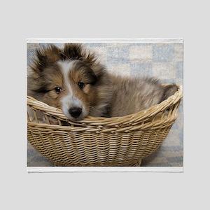 Sheltie Puppy Throw Blanket