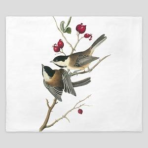 Black-capped Chickadee King Duvet
