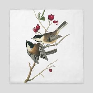 Black-capped Chickadee Queen Duvet
