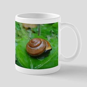 Snail on Leaf Mug